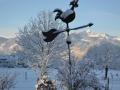 Wetterhahn Winter
